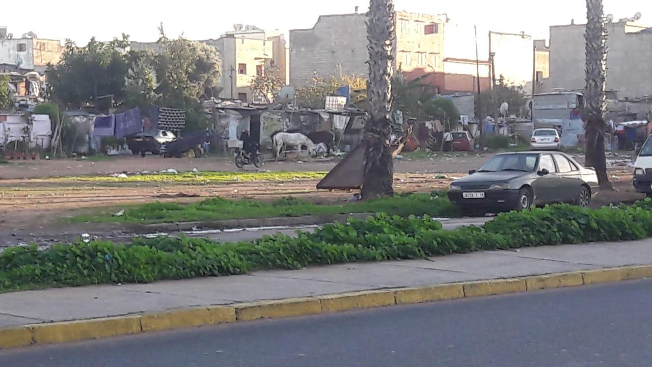 """""""المحمدية"""".. من لقب """"مدينة الزهور"""" إلى """"مدينة الأشواك"""" 3"""